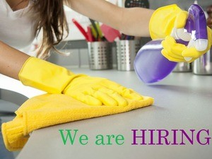 DOMESTIC CLEANER in BROMELY!!!
